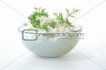 Fresh cottage cheese and fennel