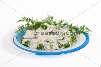 Fresh cottage cheese and fennel on a plate.