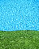 fresh grass beside the blue swimming pool