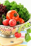fresh vegetables, cucumber, radish, tomato and lettuce in a colander