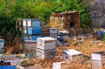 Beehives being stored