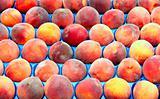 Fresh peaches on market stall