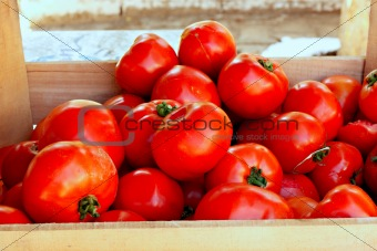 Tomatoes on a market stall