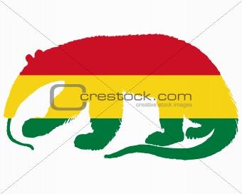 Anteater Bolivia