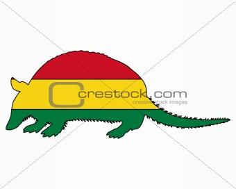 Armadillo Bolivia