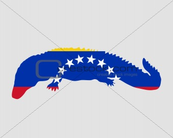 Caiman Venezuela