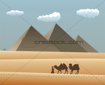 camels and bedouin in desert