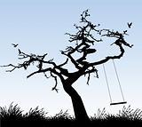 tree StockPhoto