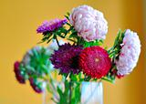 bunch of beautiful flowers in a vase. pions