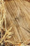 Detail of wooden cut texture and dry grass hay - frame
