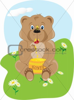 Baby Bear Eating Honey