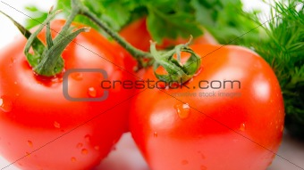 Tomatoes with herbs