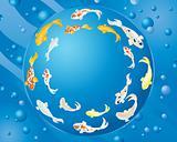 circular koi carp design