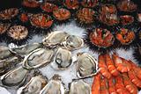 Seafood decoration 2
