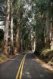 Scenic road.