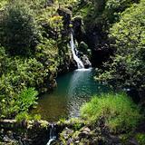 Lush waterfall.
