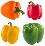 Fresh Bell Pepper Series