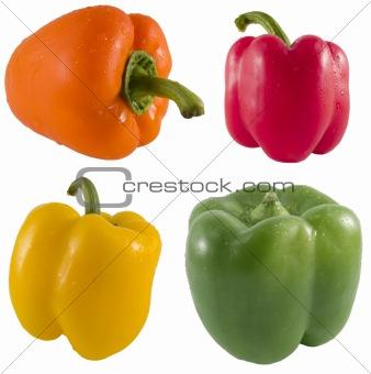 Fresh Bell Pepper Series