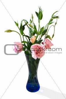 Bouquet of pink flowers in vase isolated