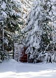 Gate in a snow woods