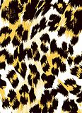 animal skin texture pattern