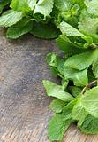 bunch of fresh green mint on wooden cutting board