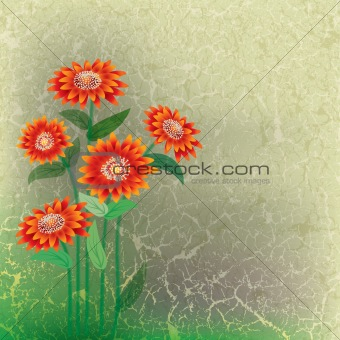 abstract floral illustration