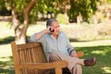 Mature man phoning in the park