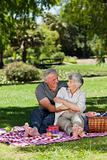 Mature couple  picnicking