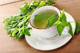 Fresh Mint Tea