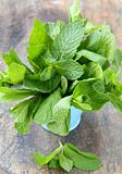 bunch of fresh green mint on wooden cutting board