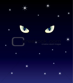 cat's eyes in the dark