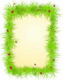 Vector spring frame with ladybugs