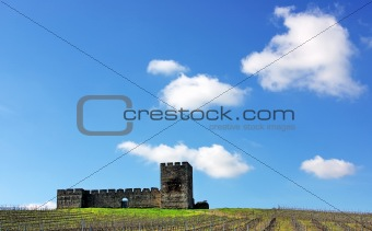 Valongo castle, Alentejo, Portugal.