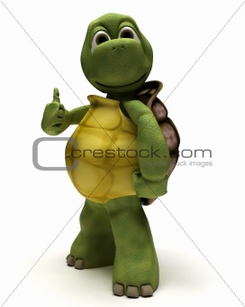 tortoise with thumbs up