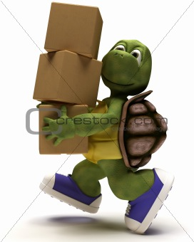 Tortoise Caricature runniing with packing cartons