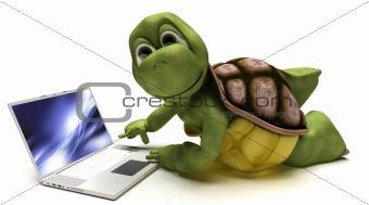 Tortoise on a laptop computer
