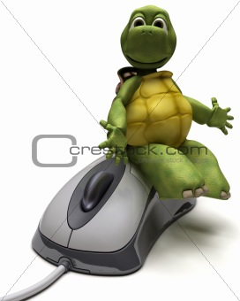 Tortoise with a computer mouse
