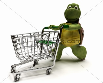 Tortoise with a shopping cart