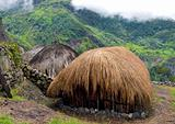 traditional village in Papua
