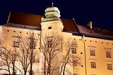 Wawel Castle night time