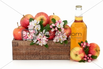 Cider Apples with Blossom