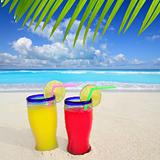 beach tropical cocktails palm tree leafl turquoise beach