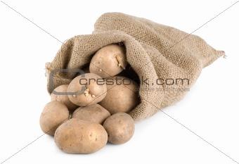 Potatoes in a hessian sack
