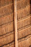 palapa tropical Mexico wood cabin roof detail