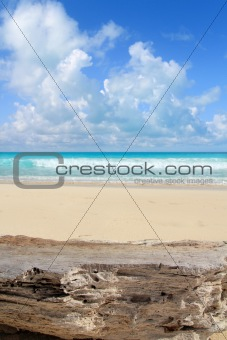 Caribbean tropical beach from weathered limestone