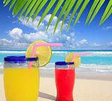 beach tropical cocktails palm tree leafl turquoise beach