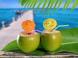 coconuts straw cocktails in tropical caribbean sea pier