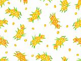 seamless pattern with sea-buckthorn berries on wine