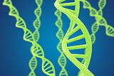 Green DNA helices on a blue background with shallow DOF